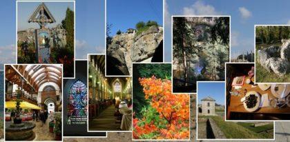 brama dogalerii albumów zdjęć